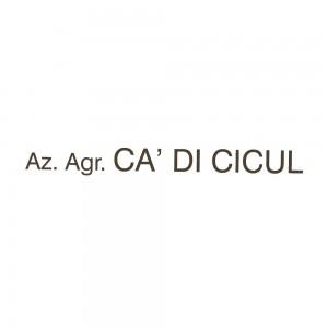 logo_cadicicul